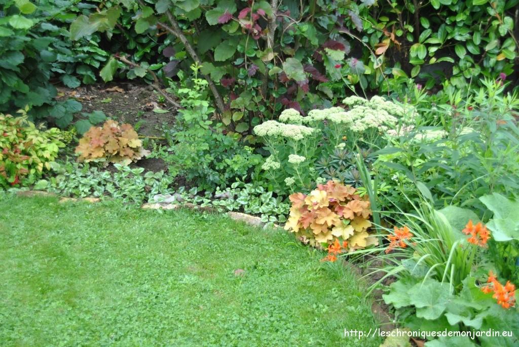 Massif pourpre et or(ange)  Les Chroniques de mon Jardin