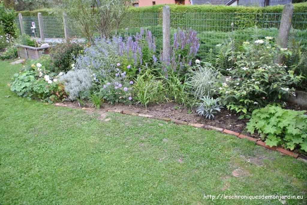 Travaux du jour les chroniques de mon jardin for Parterre jardin
