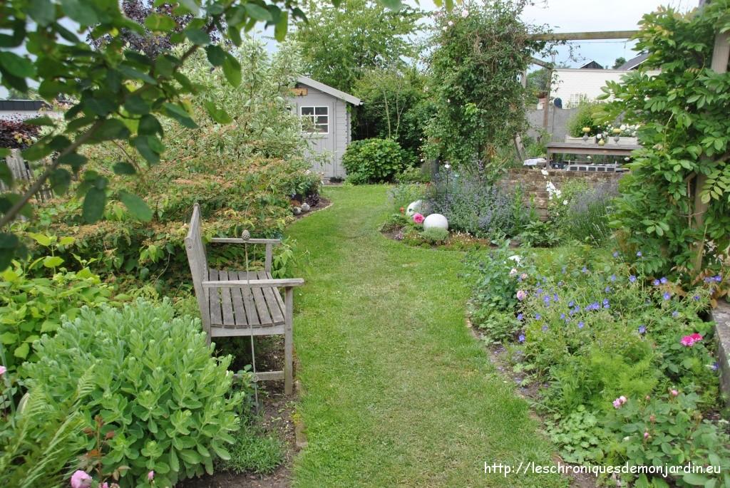 Une All E De Roses Les Chroniques De Mon Jardin