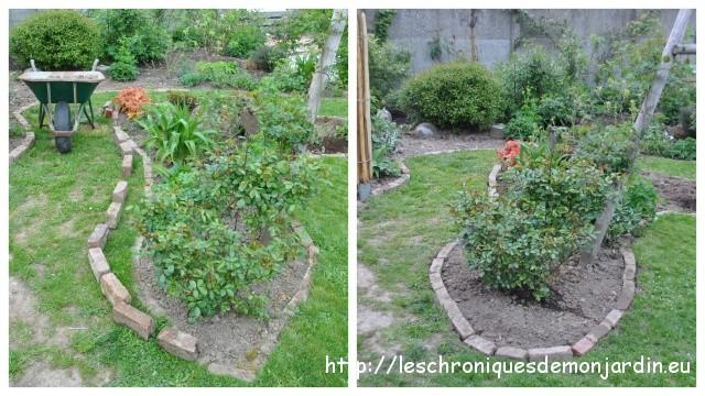 Grignotage et structures pour rosiers les chroniques de - Support pour rosiers grimpants ...