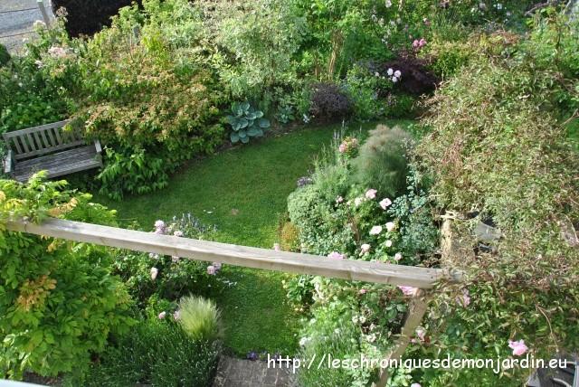 Le massif \'Mathis\'   Les Chroniques de mon Jardin