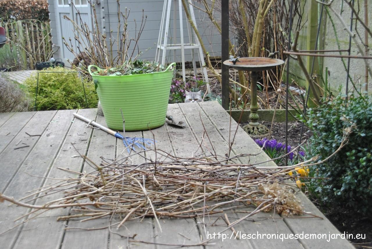 Nettoyage de printemps les chroniques de mon jardin for Nettoyage jardin printemps