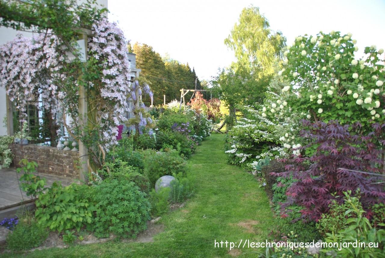 Viornes cie les chroniques de mon jardin for Derriere les murs de mon jardin